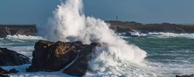 Waves EN