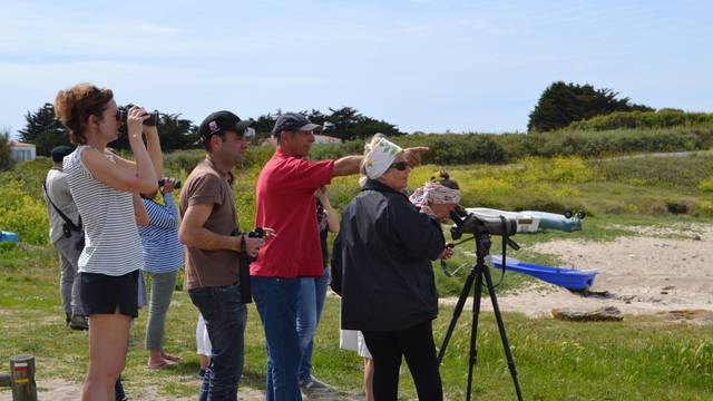 Bird watching on L'île d'Yeu © Ile d'Yeu Tourist Office