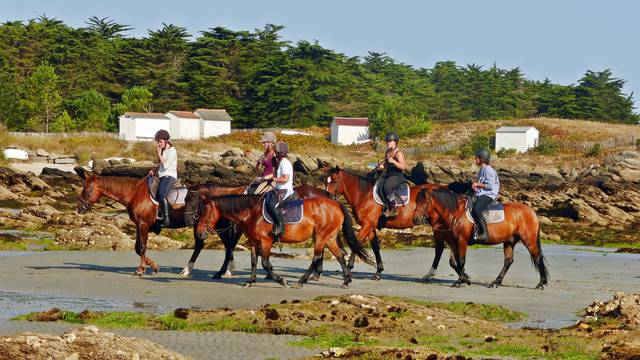 Riding, les Violettes equestrian centre, Ile d'Yeu