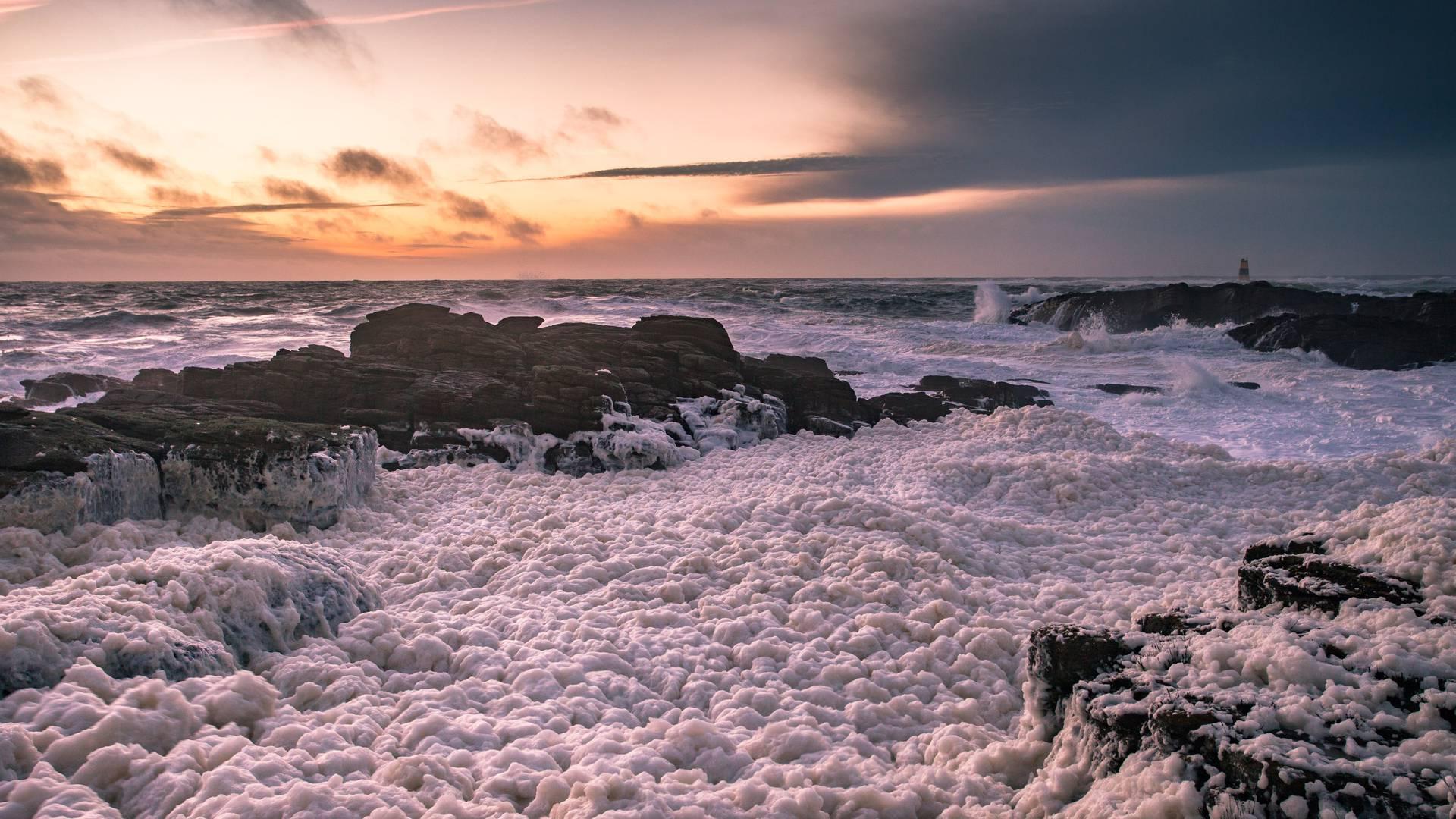 Foam, L'île d'Yeu © Office de Tourisme de l'île d'Yeu