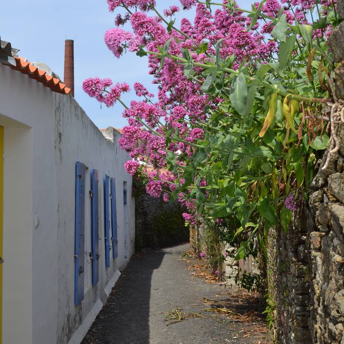 Alleys of Port-Joinville, Ile d'Yeu